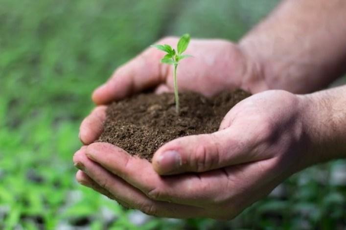 Agricultura Sustentável e o meio ambiente