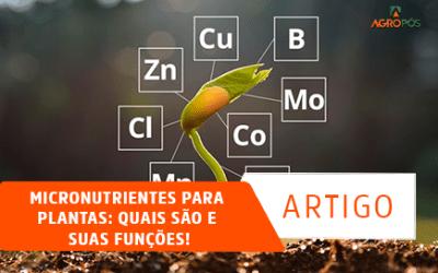 Micronutrientes para Plantas: quais são e suas funções!