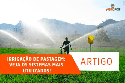 Irrigação de Pastagem: Veja os Sistemas mais utilizados!