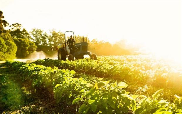 Αγροσύμβουλος Ο.Ε. - Ταμείο Αγροτικής Επιχειρηματικότητας