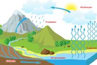 Pengertian Jenis dan Proses Siklus Air