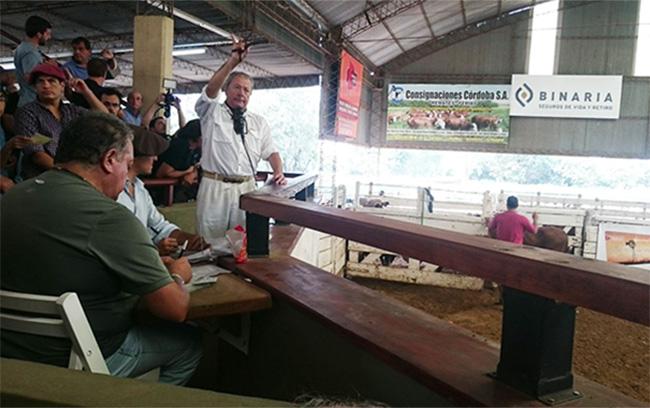 ConsignacionesCordoba-Perez w