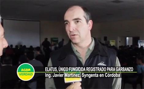 Syngenta-JavierMartinez-Legumbres2017 w