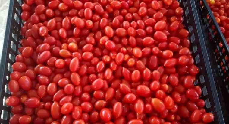 Tomates Cherries
