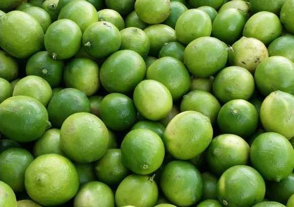 Limones recién cortados