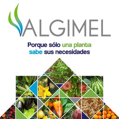 ALGIMEL