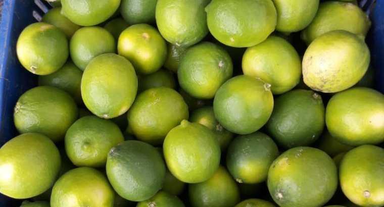 Limón por sacos