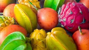 compro fruta exotica para exportar