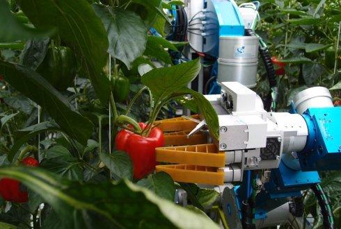 Así influirá la robótica en la agricultura en 2019