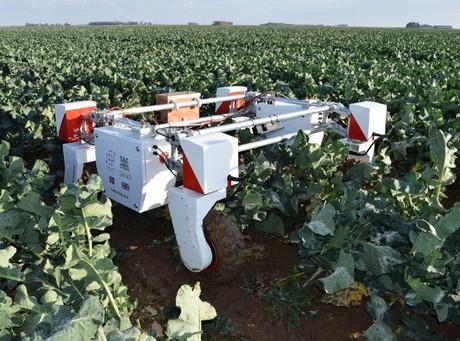 Crean el primer centro del mundo especializado en robótica agroalimentaria