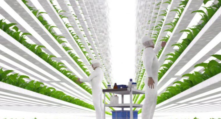 Agricultura sostenible, producir más con menos