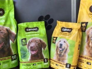 Alimento para perros