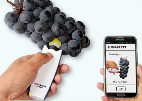 Conozca el escáner de bolsillo para frutas