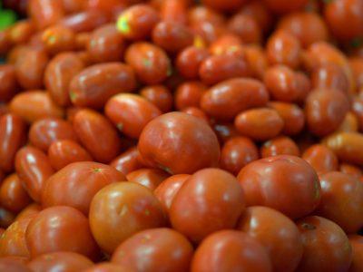 EE.UU impone arancel de 17.5% al tomate mexicano