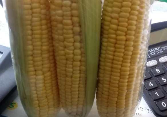 Bandeja maíz dulce