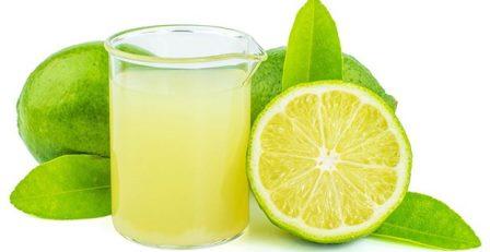 Zumo de limón por galones – Agrozon