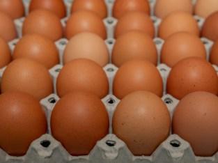 Tenemos huevos marrones