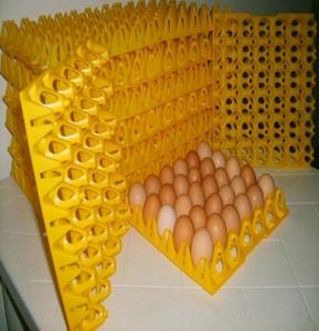 Separadores de huevos