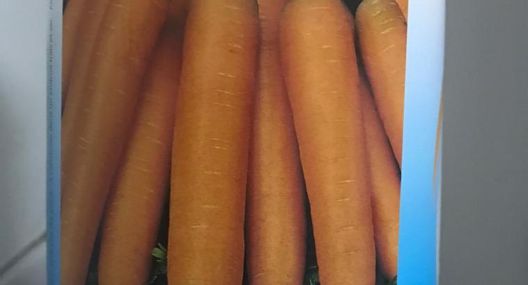 Semillas zanahoria