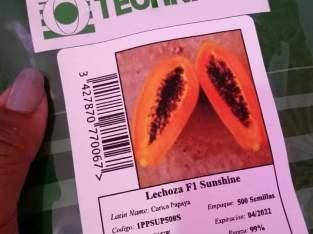 Semillas de lechosa o papaya