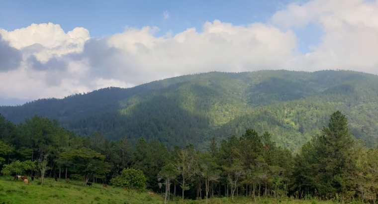 Tareas de tierra en venta Jarabacoa