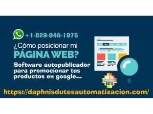 SEO POSICIONAMIENTO WEB EN SANTO DOMINGO REPUBLICA DOMINICANA