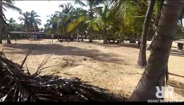 TERRENO DE 6,000 METROS FRENTE A LA PLAYA EN PUNTA CANA
