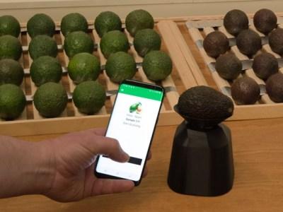 """""""Con la tecnología infrarroja, el escáner predice la vida útil de las frutas y hortalizas"""""""