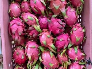 Frutas de pitahaya