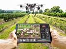 Robots voladores con inteligencia artificial para identificar las frutas listas para la cosecha