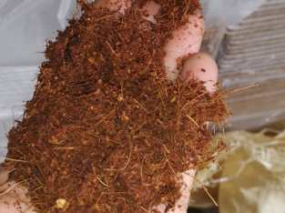 Sustrato de fibra de coco