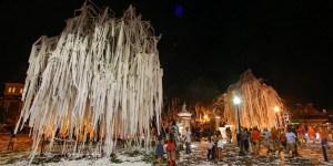 アーバン大、名所の樫の木を植え替える