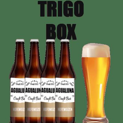 TRIGO BOX
