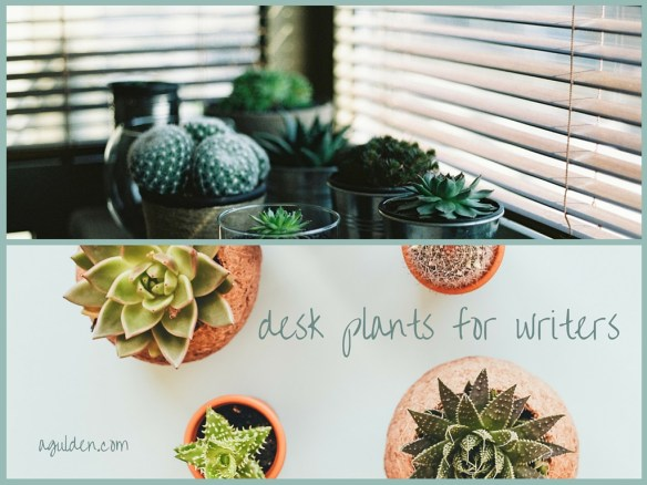 desk plants writers