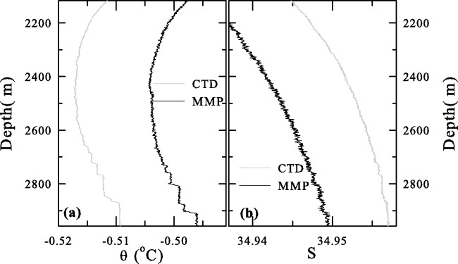 Characterization of double diffusive convection steps and