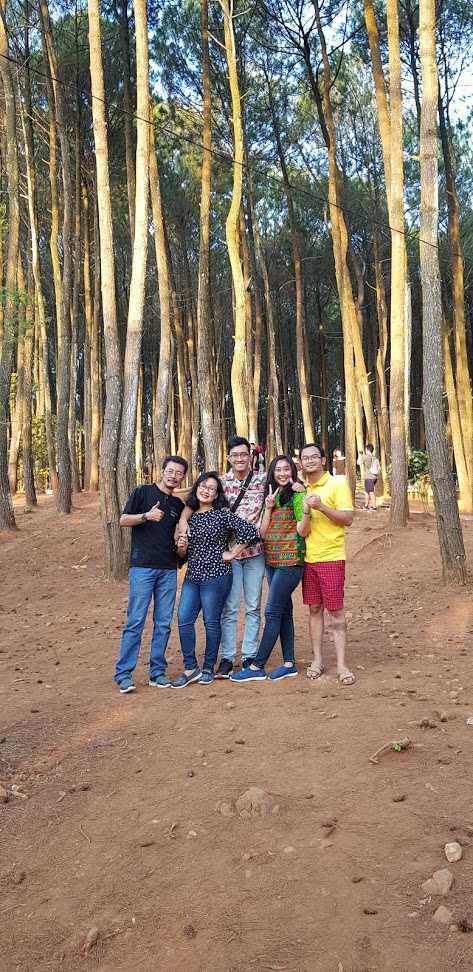 Hutan Pinus Pengger, Dlingo, Bantul, Yogyakarta