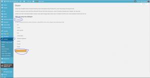 Wordpress Yang Tidak Bisa Menambah Tema? Cara Mengatasinya 1