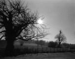 Behind Tewskbury Abbey, England - England_HNU