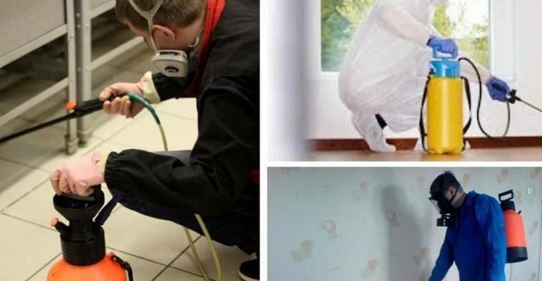 شركة مكافحة حشرات بمكة ورش مبيدات0557090299