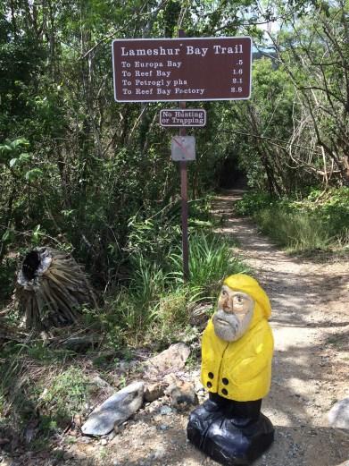 Captain Ahab of Ahab's Adventures hiking to Europa Bay on St. John U.S. Virgin Islands 2016