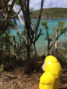 Captain Ahab of Ahab's Adventures hiking to Yawzi Point on St. John U.S. Virgin Islands 2016