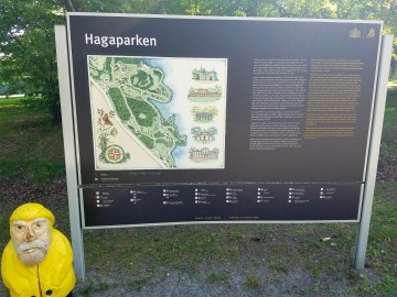 Captain Ahab of Ahab's Adventures figuring out our route inside Hagaparken in Stockholm Sweden 2016