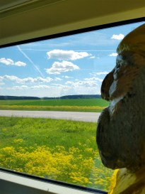 Captain Ahab of Ahab's Adventures enjoying a scenic view from out train ride through Sweden 2016