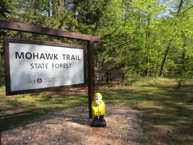 Captain Ahab of Ahab's Adventures at the Mohawk Trail State Forest in Massachusetts 2015
