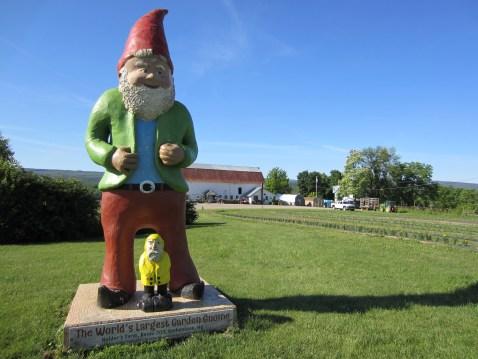 Captain Ahab of Ahab's Adventures stopped to meet The World's Largest Garden Gnome at Kelder's Farm in Kerhonkson Pennsylvania 2015