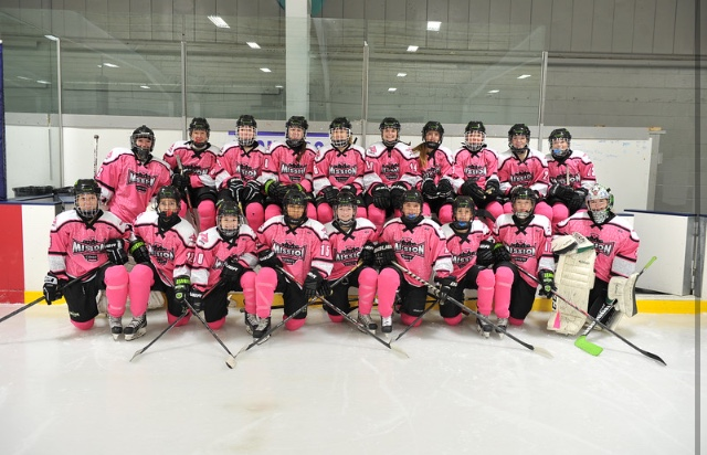pink in the rink 2014 team photo