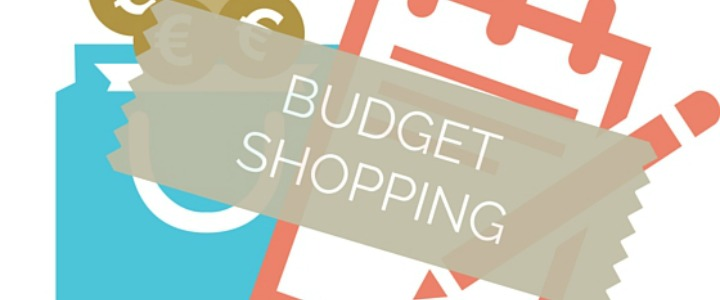 Image of coins, bag and notebook with the text budget shopping
