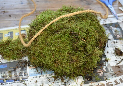 How to make a diy moss pumpkin using scrunched up newspapers
