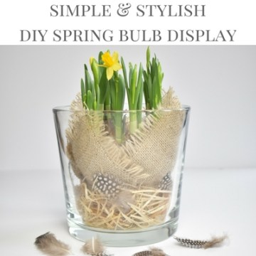 Learn How To Make A Simple And Stylish DIY Spring Bulb Arrangement In A Step By Step Tutorial Over On The A Happy Home In Holland Website