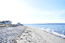 Discovery Beach Daze